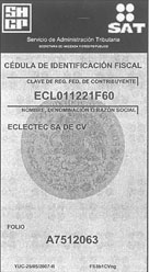 <em>Cedula de Indentificación Fiscal</em>